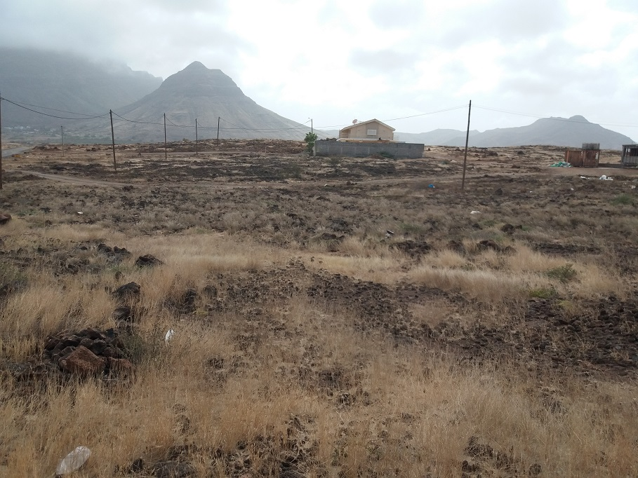 Baia Das Gatas Land for sale
